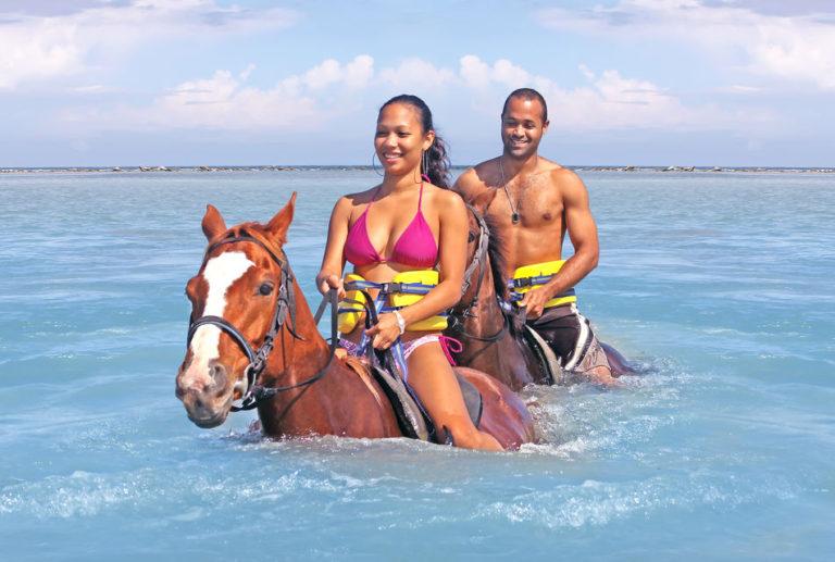 horseback-256735-145