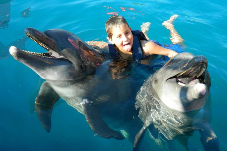 cancun-dolphin-swim-the-best-experience-for-kids